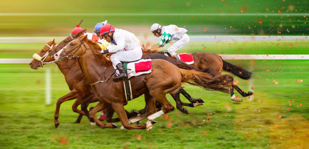 Virtual horses odds and how they work